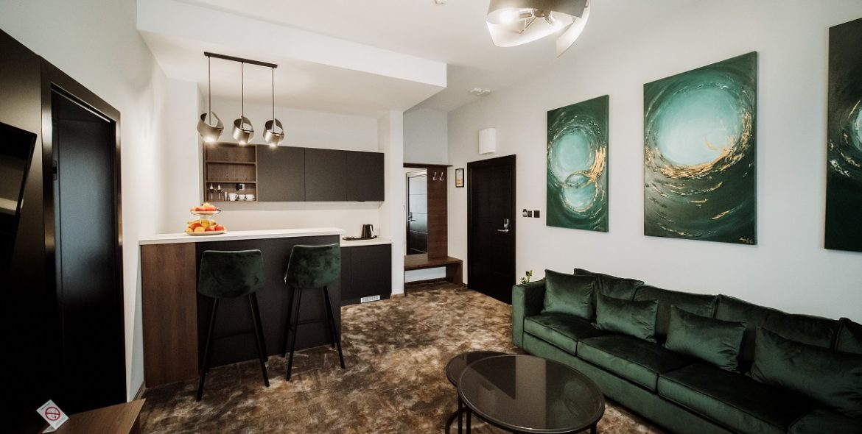 apartman sa kuhinjom (14)